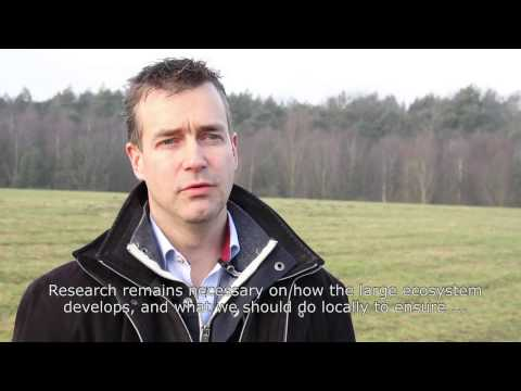 Prof. Gert-Jan Nabuurs over het Europese bos in nieuwe bio-economie | Wageningen UR