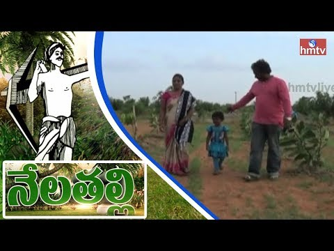 Young Software Couple Turns A Successful Farmers In Bangalore | Nela Talli | HMTV