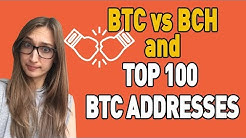 Top 100 Bitcoin Addresses And Their Reaction To BCH