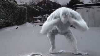 AMAZING REAL Abominable Snowman BIGFOOT!