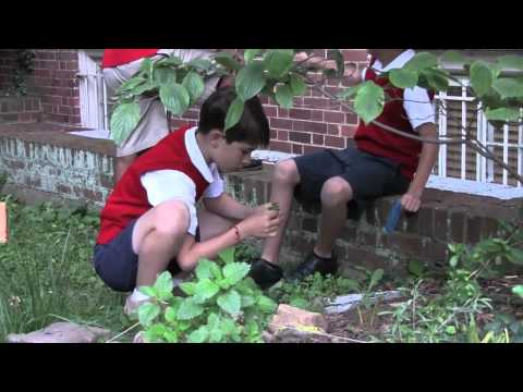 Christ Episcopal School Green School Promo