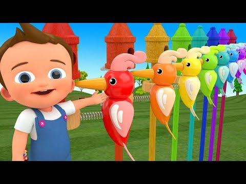 Little Ba Fun Learning Colors for Children with Woodpecker Birds Spring ToySet 3D Kids Educational