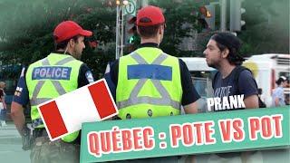 Pranque : Pote VS Marijuana