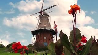 Gambar cover Holland Michigan Video, Andrea Crossman
