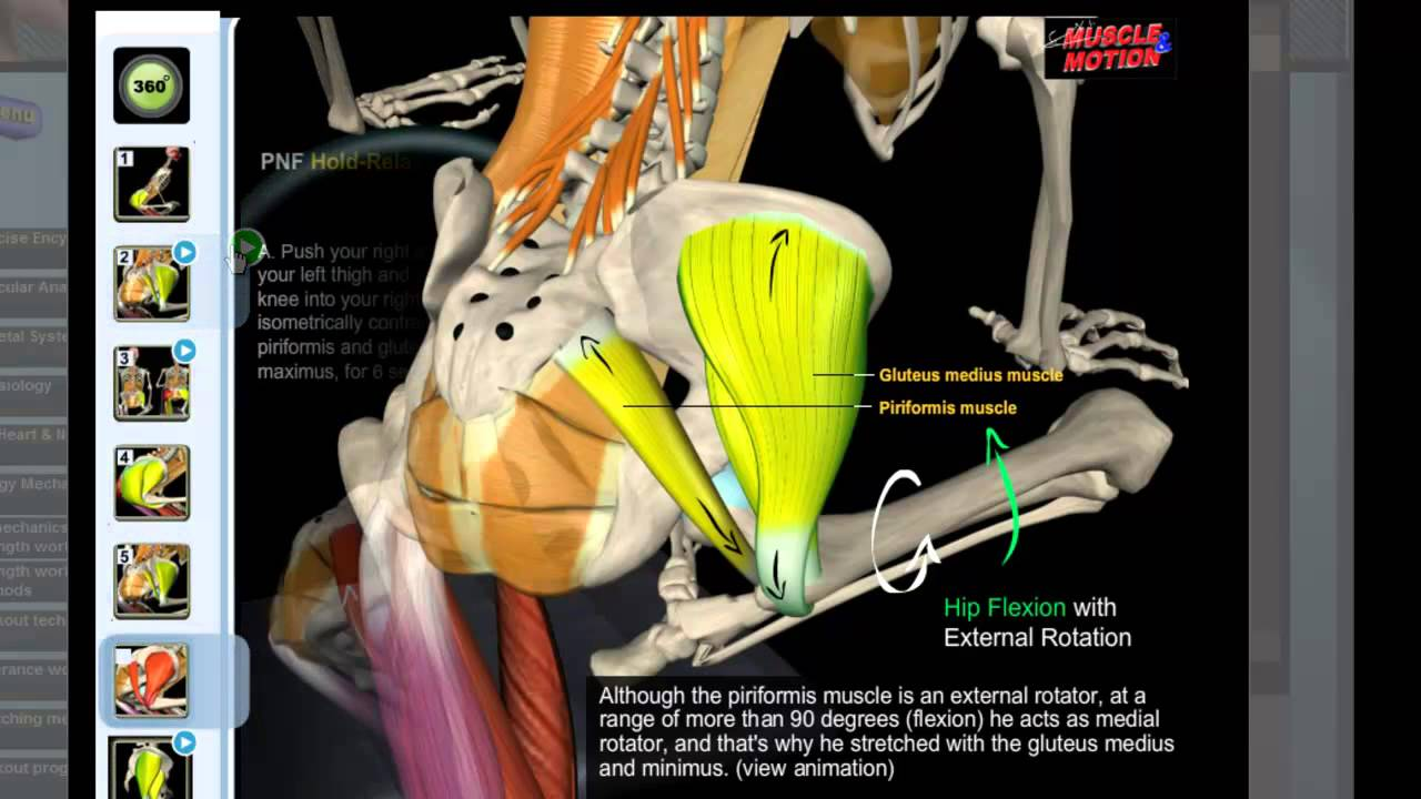 how to get deep piriformis stretch