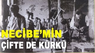 Necibe'min Çifte de Kürkü (Necibe'm) - Mustafa Aksu