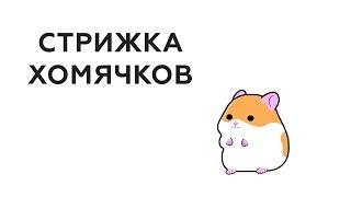 Стрижка Хомяков (Анимация) | Трейдерский юмор