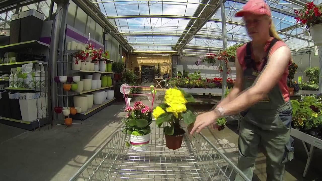 Garten shop  Hephata Garten-Shop Dahler Kirchweg - YouTube