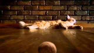TEMPTATIONS® Treats for Cats – TUMBLERS™ Commercial 2014