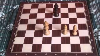 Come fare scacco matto con gli Alfieri