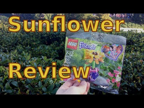Lego Sunflower Polybag Review | 30404 Friendship Flower | Live Reaction