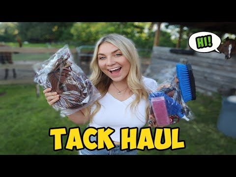 TACK HAUL! | Horse Tack Auction