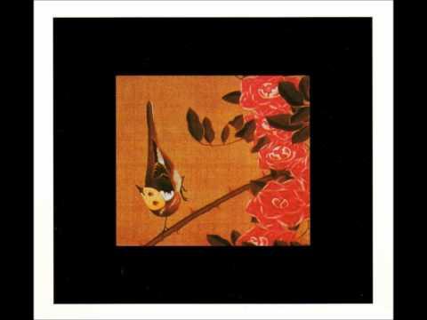 Susumu Yokota - The Colour Of Pomegranates