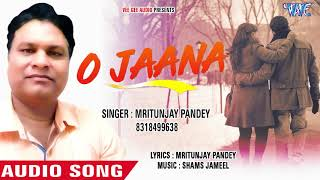 SUPERHIT HINDI SONGS 2018 - O Jaana - Mritunjay Pandey - Hindi Hit Romantic Song 2018