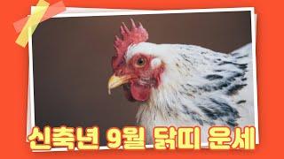 [백련사]신축년 양력 9월 닭띠 운세!!