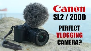 Canon SL2 / 200D Review: The Perfect Vlogging Camera?