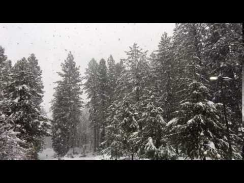 Snow at Incline Village NV