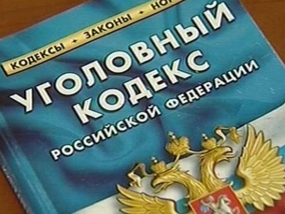 уголовный кодекс россии скачать - фото 7