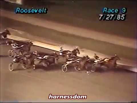 1985 Roosevelt Raceway ROCKIN ABBE nw25,000CD Pace $24,000
