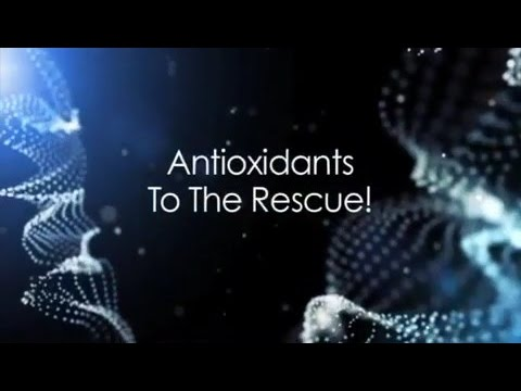 (E03) Antioxidants to the Rescue!