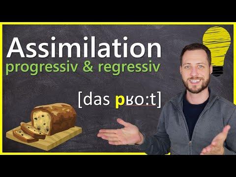 progressive und regressive