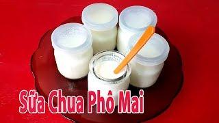 Cách Làm Sữa Chua Phô Mai Đơn Giản Dưỡng Chất   nhu the nao