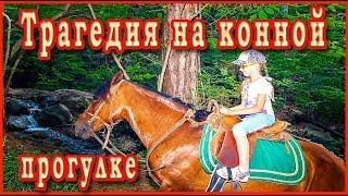 ТРАГИЧЕСКОЕ ПРОИСШЕСТВИЕ на конной прогулке. Животные в Индии живут среди людей.