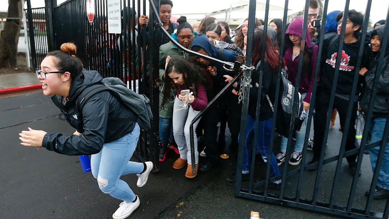 Students at Concord's Mt  Diablo High break through gate in gun protest