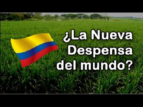 La Sorprendente Transformacion de Colombia a Traves del Agro | Documental