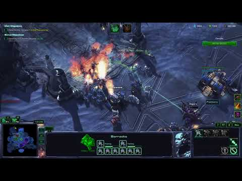 StarCraft 2 Co-op. what the hell am i doing?