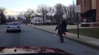 Biker Boy Pug  12 o