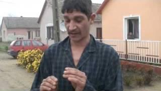 Péter - Cotton Eye Joe (www.szabolcsbuli.hu) :)