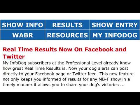 How To Find Akc Dog Shows