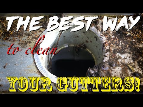 The BEST WAY to Clean Your Gutters!  Gross!
