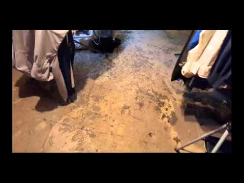 Carpet Cleaning Company Service Arizona