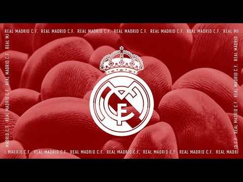 Adidas X Parley: Real Madrid Third Kit Event NYC