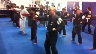 Adult Zen Do Kai class