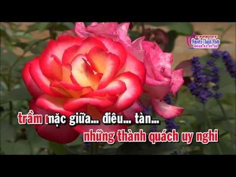 Karaoke TD TÂM SỰ MAI ĐÌNH - THIẾU ĐÀO [Jimmy Tran]
