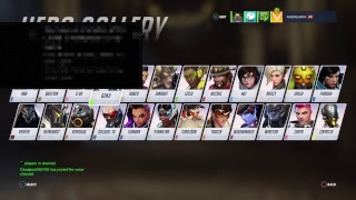 Overwatch With Friends
