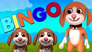 bingo anjing | lagu anak anjing | anak-anak puisi | lagu pendidikan | Nursery Rhymes | Bingo The Dog