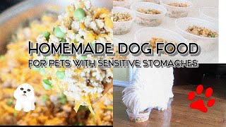 Homemade Dog Food for Sensitive Stomachs | Why I Make My Dog's Food | WARNING SENSITIVE IMAGES