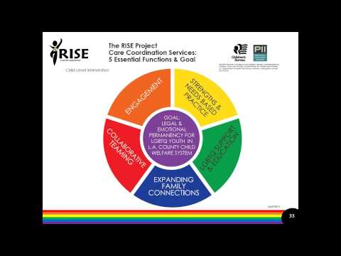 RISE Initiative: Serving LGBT Children in the Los Angeles DCFS System