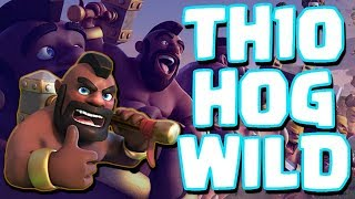 TOP TH10 Attack | HOGS NEW META Update | Clash of Clans War