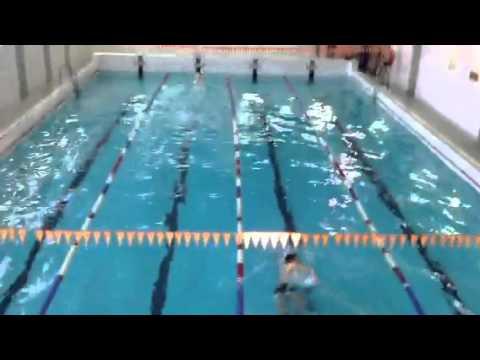 Соревнования по плаванию холдинга