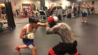 LIL CRACRA VS MIGHTY MOUSE (boxing fight)