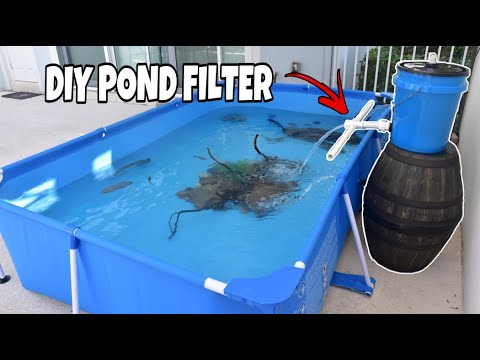 DIY SUPER EASY 5 GALLON POND FILTER For Any SIZE POND!