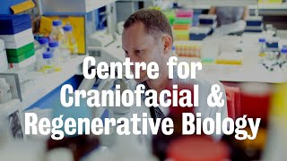 Centre for Craniofacial & Regenerative Biology | King's College London
