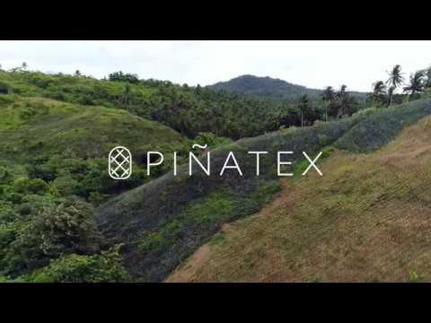 ¿Cómo se hace el Cuero de Pina de Piñatex?