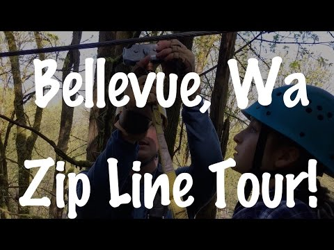 Bellevue Washington State Zip Line Tour Course 80 Feet off Ground in Trees-Review