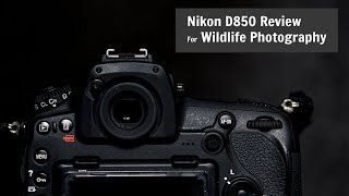 Nikon D850 for Wildlife and Photography | REVIEW one year later